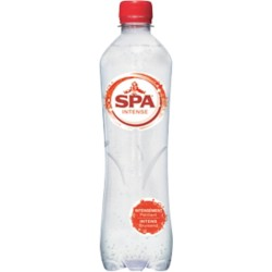 Spa Mineraalwater Intense 24 flessen à 500 ml
